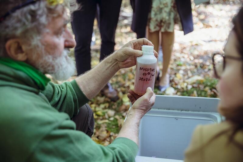 Konserwator zieleni Jerzy Nieswadba prezentuje preparat, którym szczepiona jest gdańska Wielka Aleja Lipowa