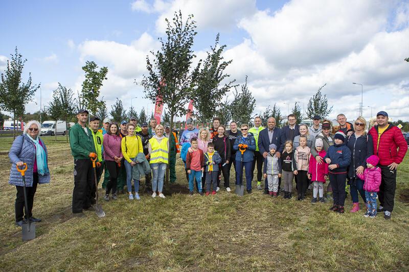 Uczestnicy akcji na tle posadzonych drzewek