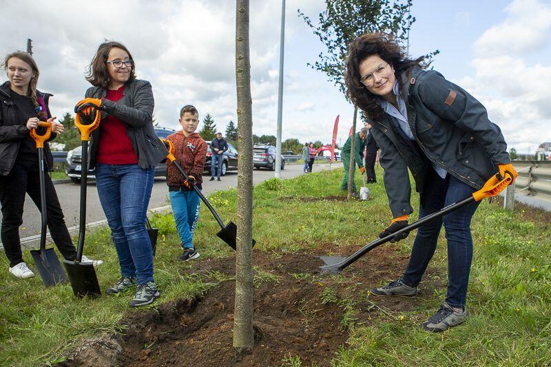Prezydent Gdańska Aleksandra Dulkiewicz w czasie akcji sadzenia drzew, obok radna miejska Kamila Błaszczyk (klub radnych Koalicji Obywatelskiej)