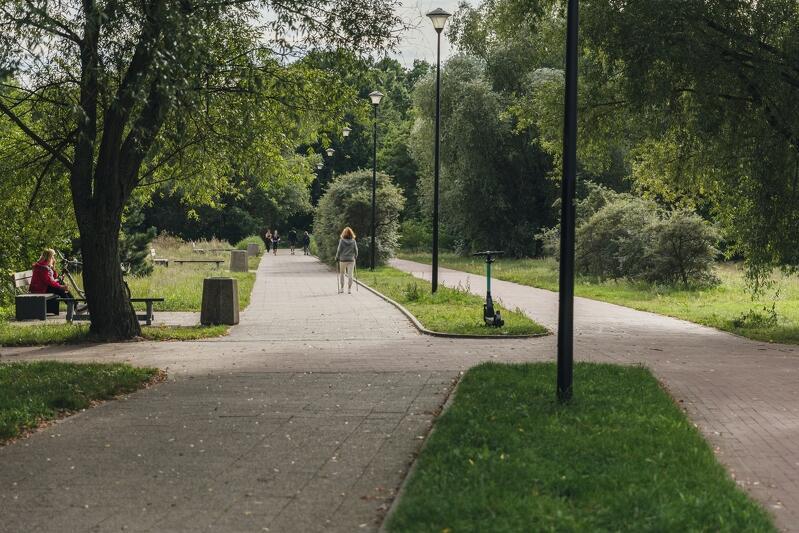 Ścieżka piesza i rowerowa przedzielone pasem zieleni. Po bokach zieleń oraz ławka. Między ścieżkami słupy oświetleniowe