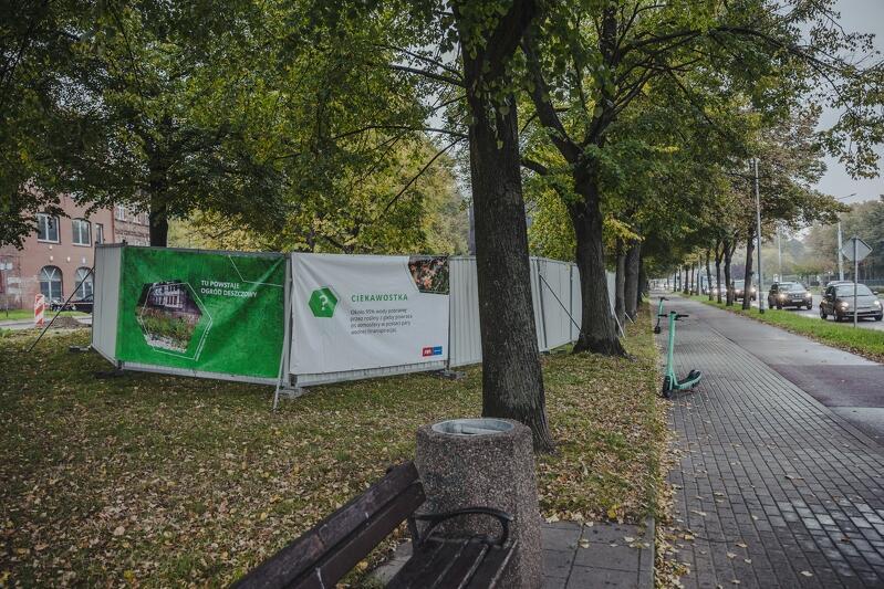 Nowy ogród deszczowy powstaje u zbiegu ulic Kartuskiej i Goszczyńskiego