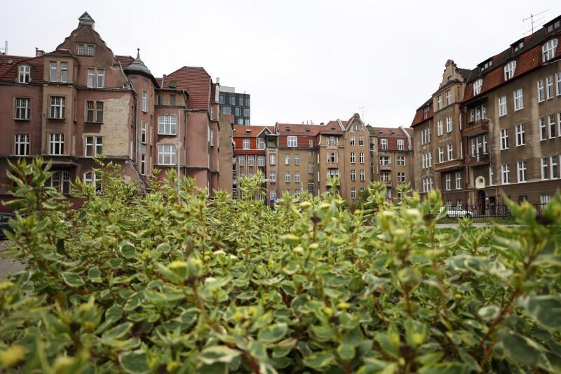 Ul. Gdyńskich Kosynierów w Gdańsku jest mało znana, choć ma swój urok. Znajduje się niedaleko Placu Solidarności, po sąsiedzku z pętlą autobusową na ul. Jana z Kolna