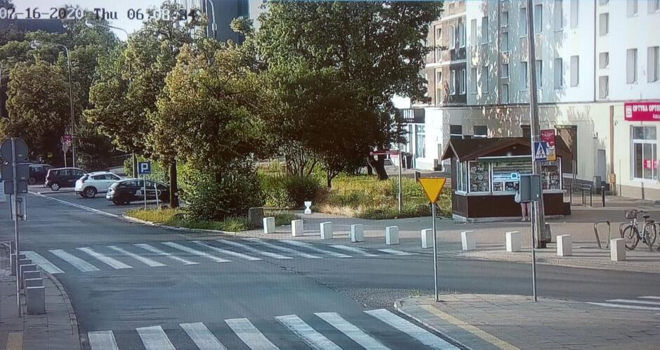 Drzewa zasłaniające kamery monitoringu miejskiego