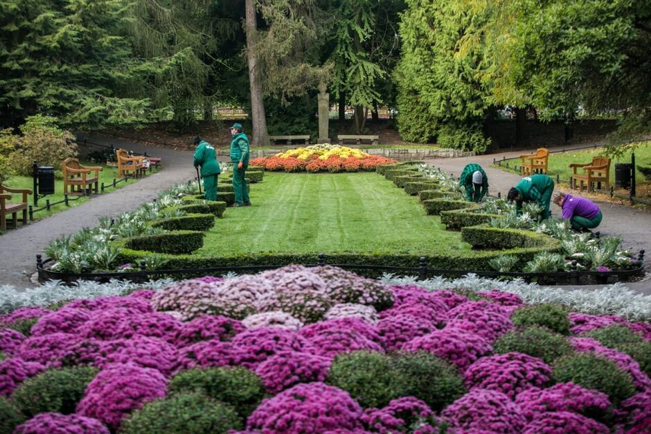 Nasadzenia jesiennych roślin prowadzone są m.in. w Parku Oliwskim