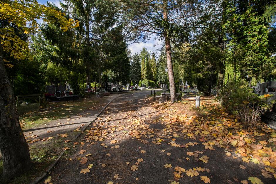 Zakaz wjazdu na Cmentarz Łostowicki i Centralny Srebrzysko  obowiązywać będzie od 29 października do 2 listopada