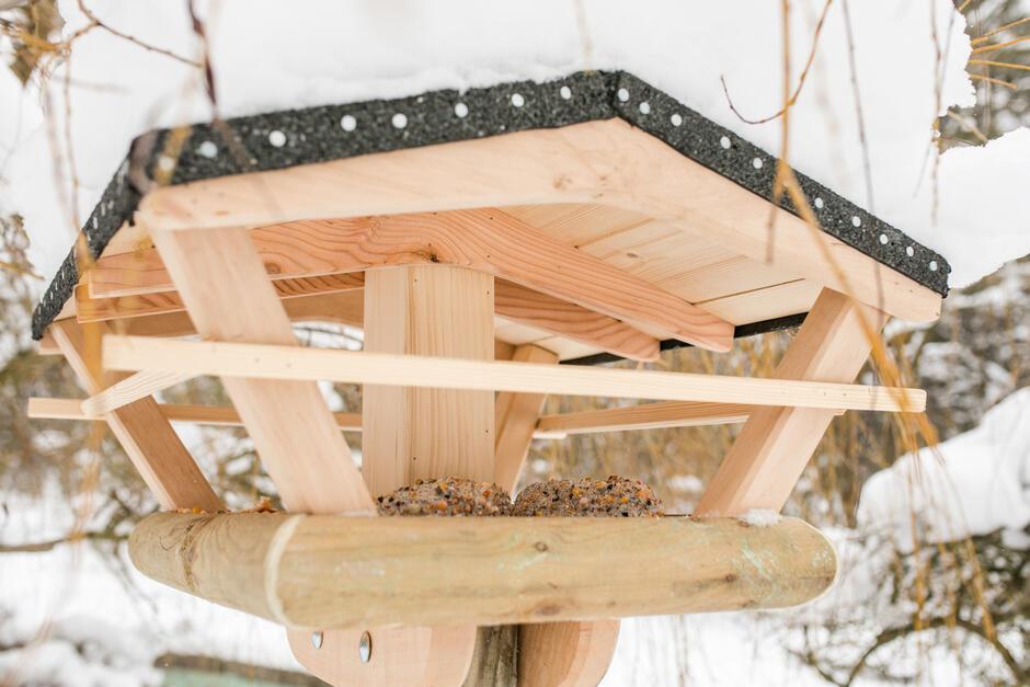 W karmnikach będziemy umieszczać mieszankę ziaren, które zapewnią ptakom zróżnicowaną dietę