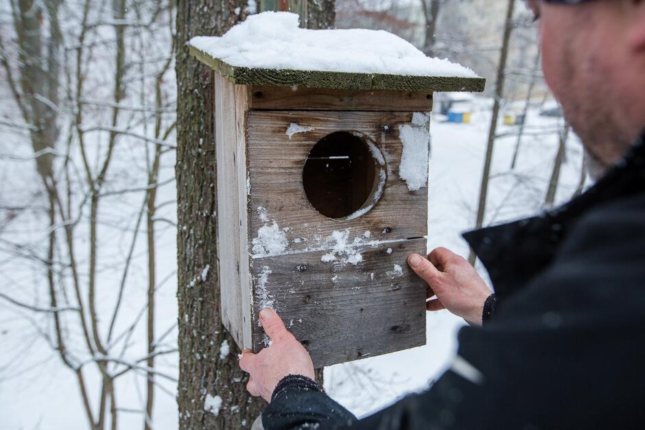 Zakończyliśmy czyszczenie 1300 budek lęgowych dla ptaków