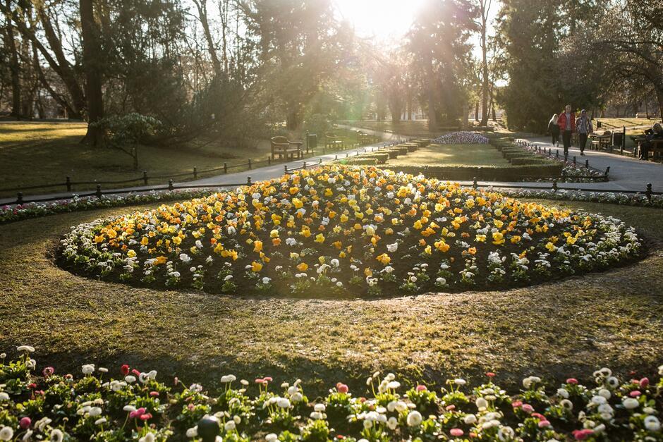 W Gdańsku posadzimy w tym worku ponad 55 tys. kwiatów