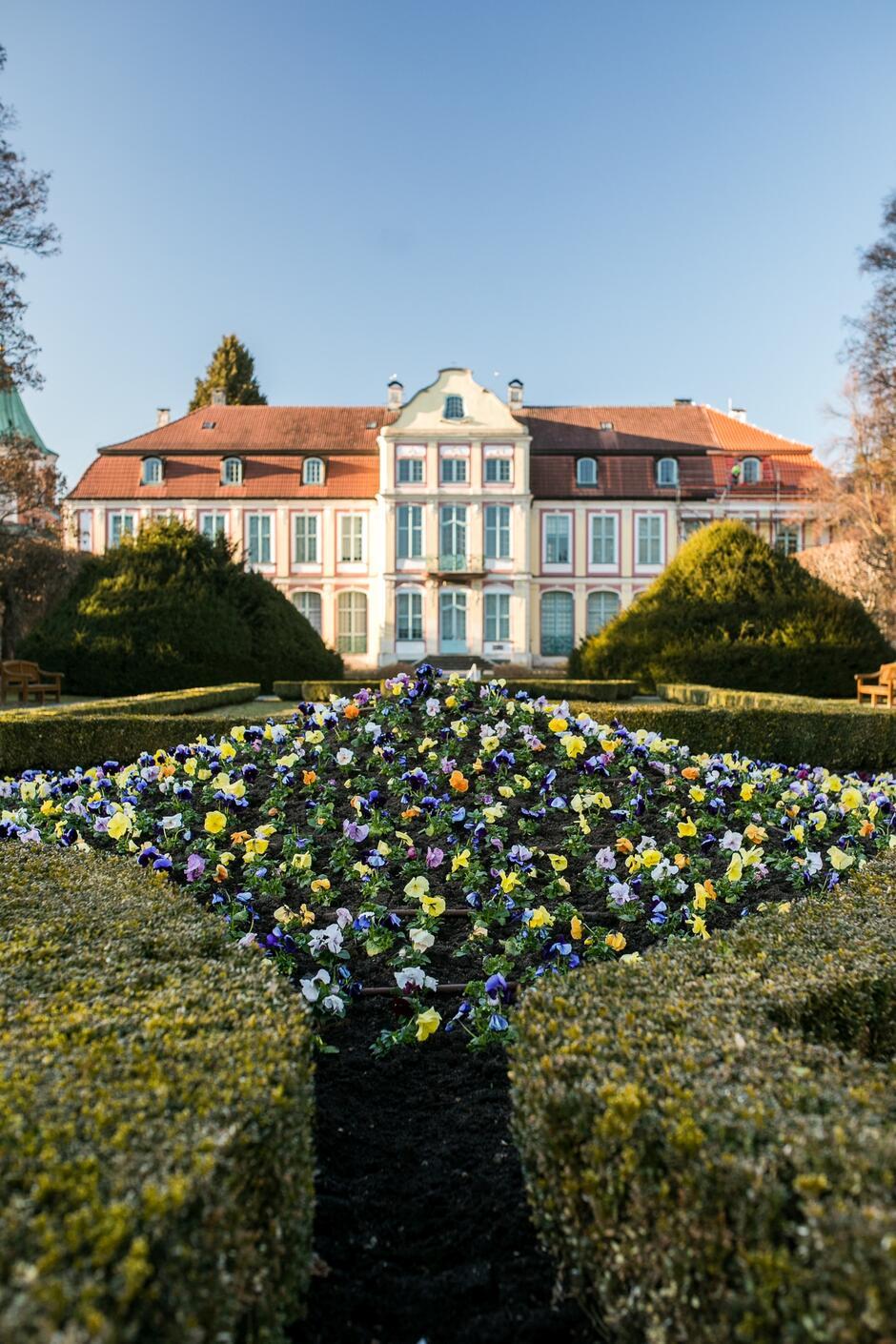 Wiosenne nasadzenia kwiatów przyozdobią rabaty w Parku Oliwskim
