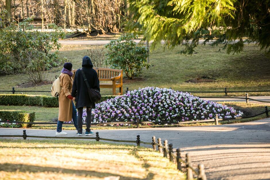 Gatunki obsadzanych kwiatów zmieniać się będą w zależności od pory roku