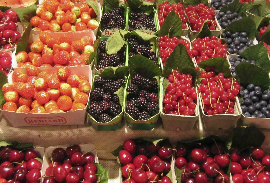 Konkurs ofert na prowadzenie sezonowych punktów handlowych sprzedaży owoców i warzyw