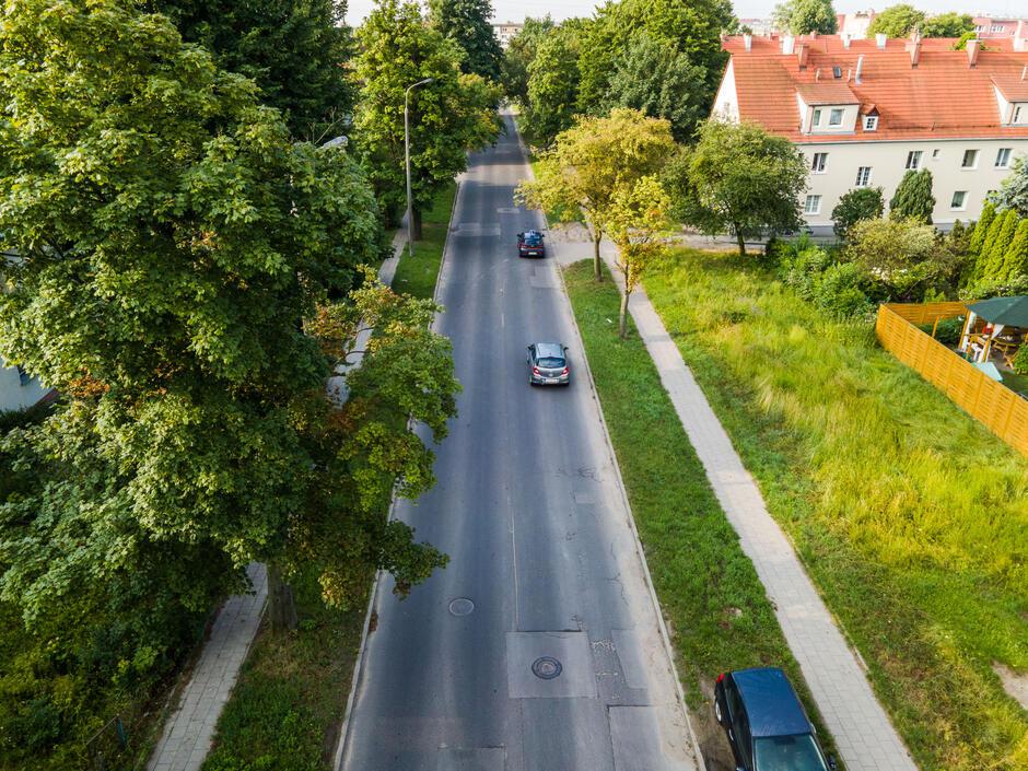Zieleń przyuliczna wzdłuż ulicy Stanisława Worcella