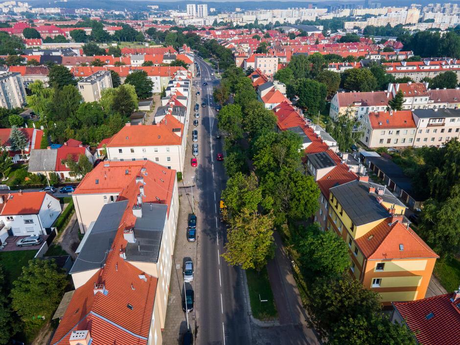 Zabiegi pielęgnacyjne przeprowadzone zostaną na ponad 150 drzewach na ul. Kościuszki