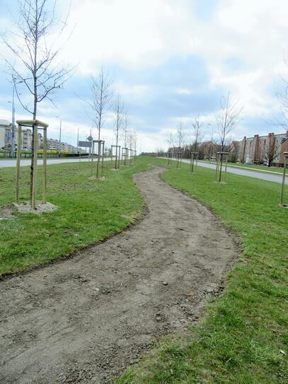 Zwiększamy bioróżnorodność w Gdańsku