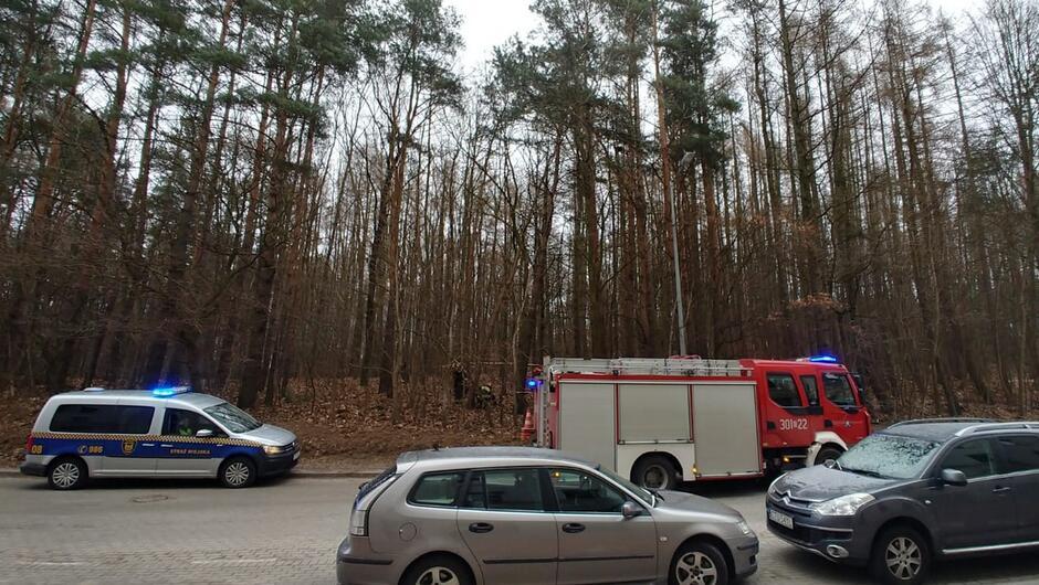 zaparkowane samochody osobowe wóz straży pożarnej radiowóz straży miejskiej las