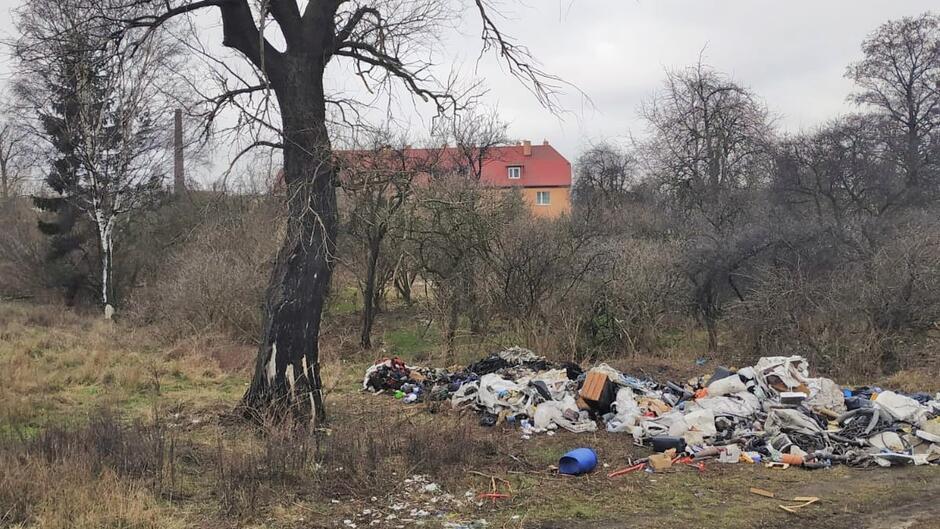 Podrzucone odpady Ku Ujciu Siennicka - Ref VI - 2019-03-11 0004a