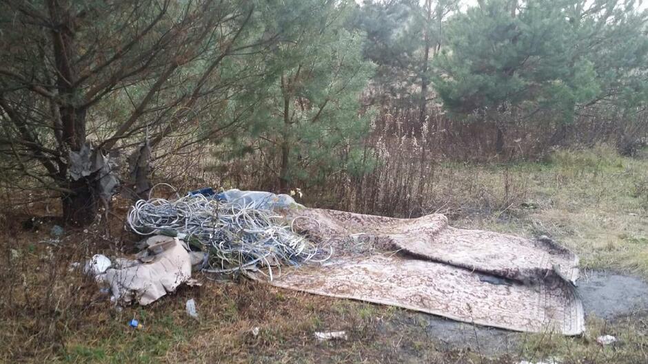 kable w lesie