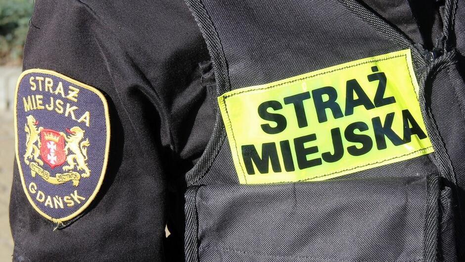 mundur polowy straż miejska kamizelka taktyczna