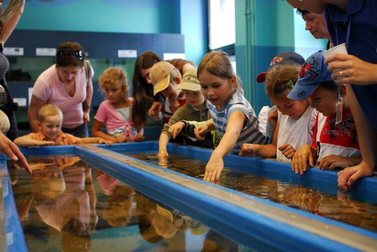 Aquarium - Gdynia