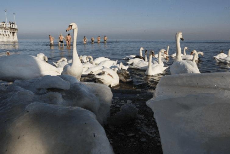 Zimowa kąpiel w Bałtyku